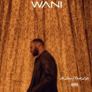 Wani - No Love ft. Prettyboy DO